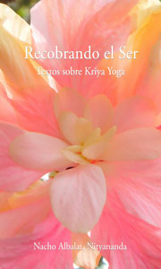 Recoverng the Self: Essays on Babaji's Kriya Yoga - Ebook